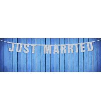 Baner Just Married,...